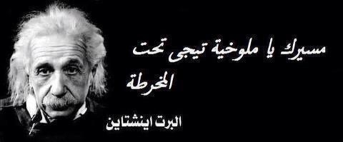مسيرك يا ملوخية تيجي تحت المخرطة البرت آينشتاين Fake Quotes Arabic Quotes Music Book