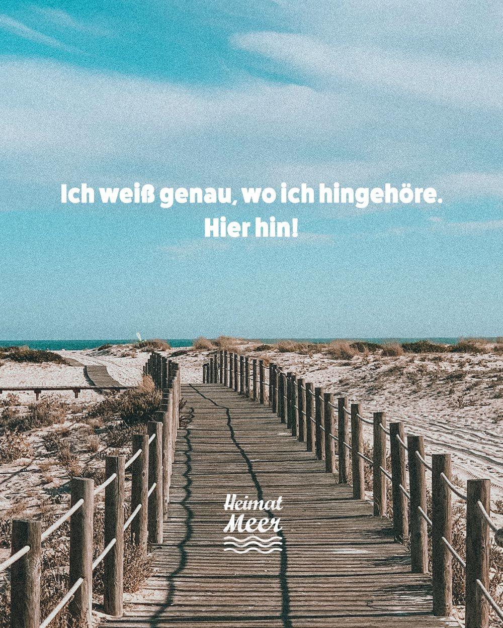 für immer&ewig 🔁mee(h)r von heimatmeer >> in 2020