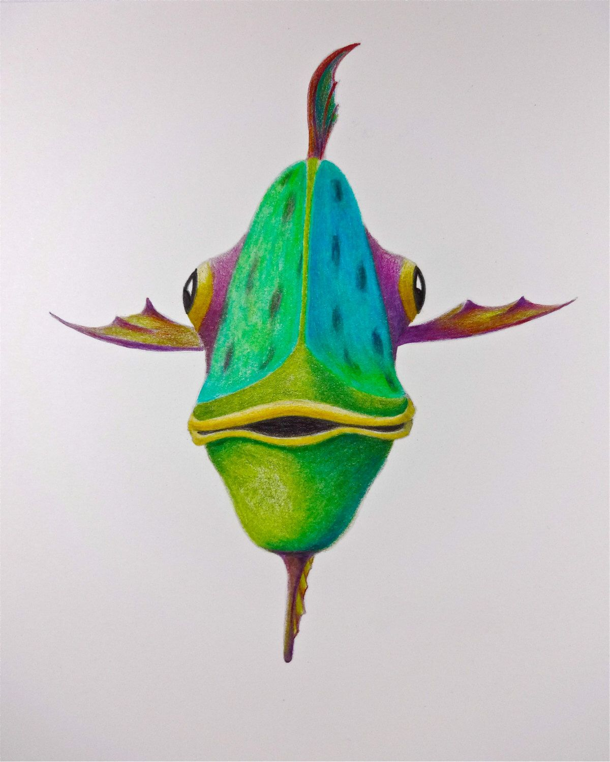 Fun fish drawing, Old Bogey, print of color pencil drawing on metal ...