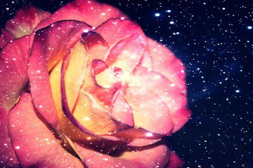Sparkling flower