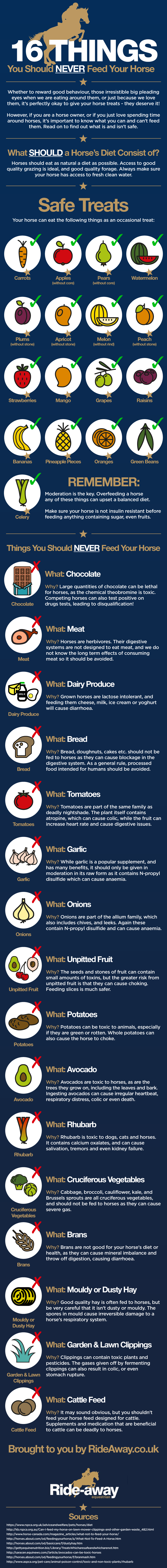 16 Things You Should Never Feed Your Horse — Infographic