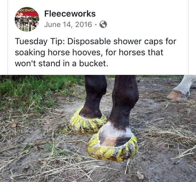 Horsecare hacks... we cover those too #equifirstaidusa # ...