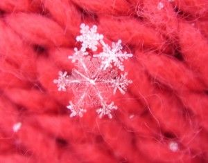 real snowflakes on a scarf. so pretty!