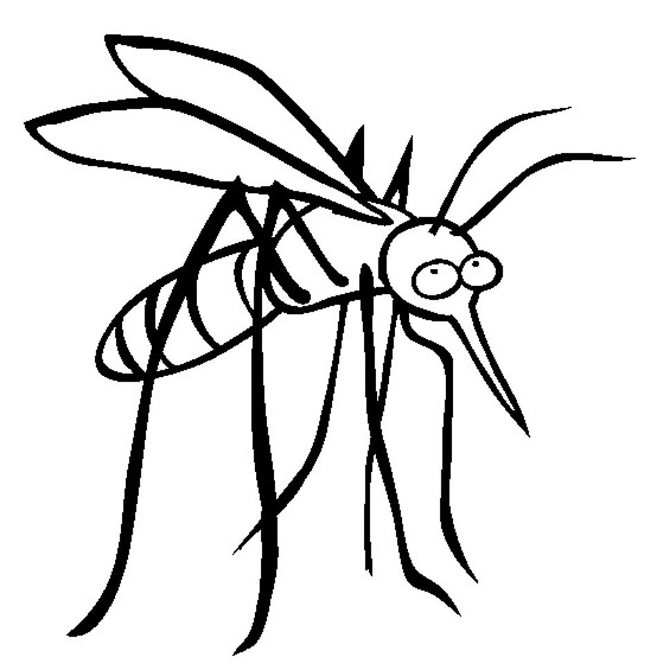 Free Printable Mosquito Coloring Pages For Kids Coloring Pages