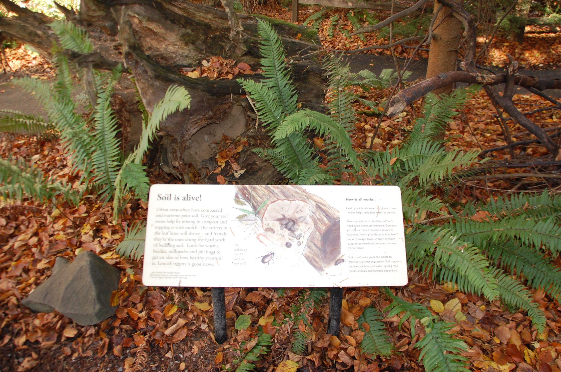 Soil Is Alive Habitat Garden Woodland Park Zoo Soil