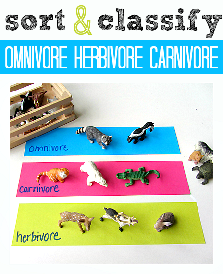 Science For Kids Omnivore, Herbivore, or Carnivore