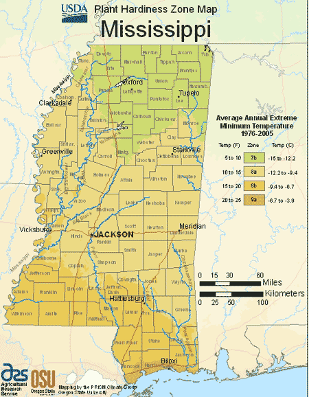 Mississippi Planting Zones – USDA Map of Mississippi Growing Zones on