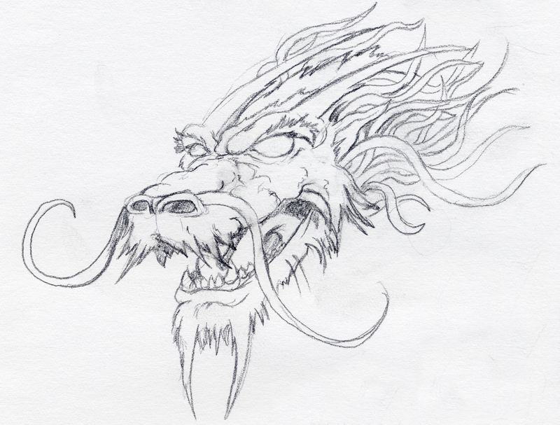 Best 25 dragon head drawing ideas on pinterest dragon head check out the chinese dragon head pic drawing available in hd resolution ccuart Images