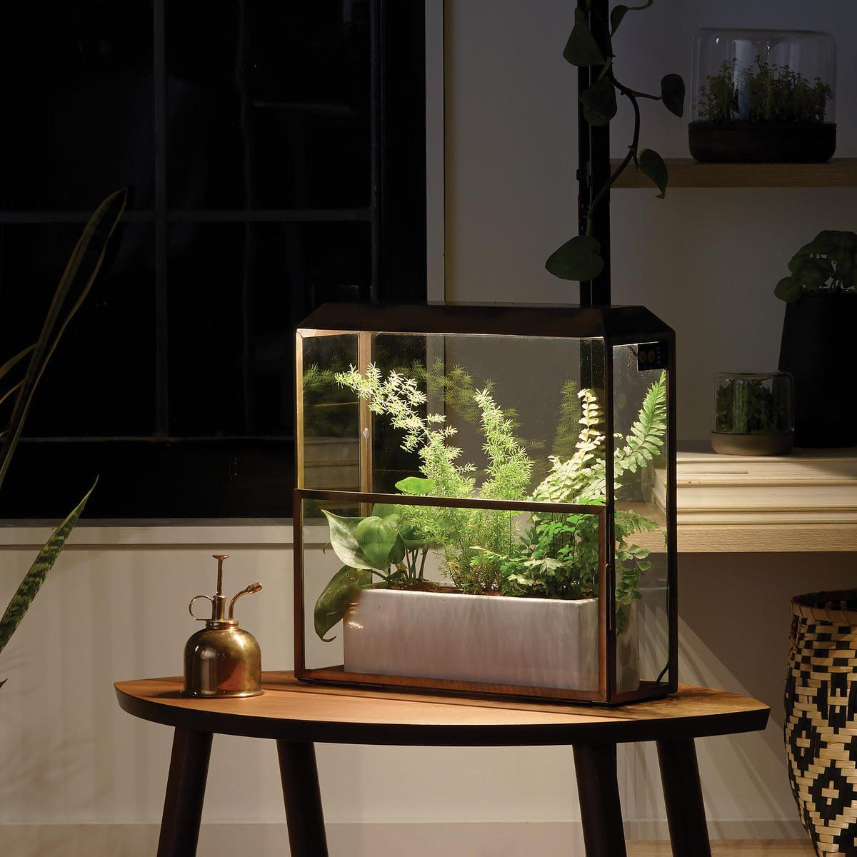Brass Growhouse Modern Grow Lights Sprouts 400 x 300