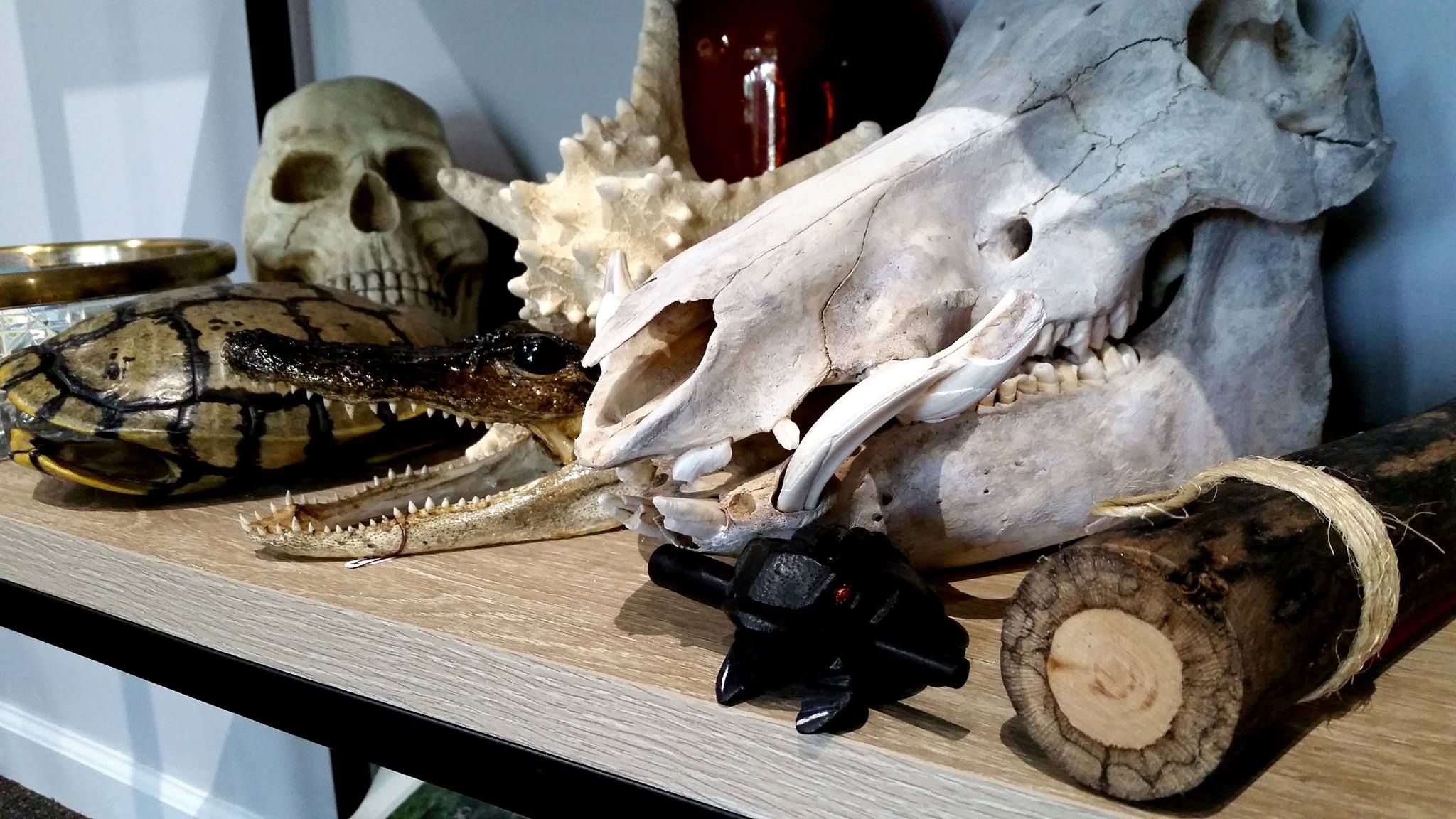 Escape Rooms Haunted places near me, Real haunted houses