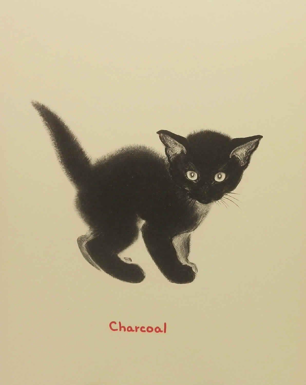 Vintage Kitten Illustration Black Cat Art Cats Illustration Cat Illustration