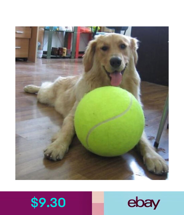 9 5 Big Large Tennis Ball Giant Pet Toy Tennis Ball Dog Chew Toy Pets Supply Ebay Home Garden Dog Ball Pet Dogs Puppies Tennis Balls For Dogs