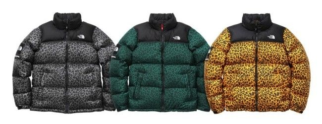 1da997bfb Supreme x The North Face Leopard Print Down Jacket | My Style ...