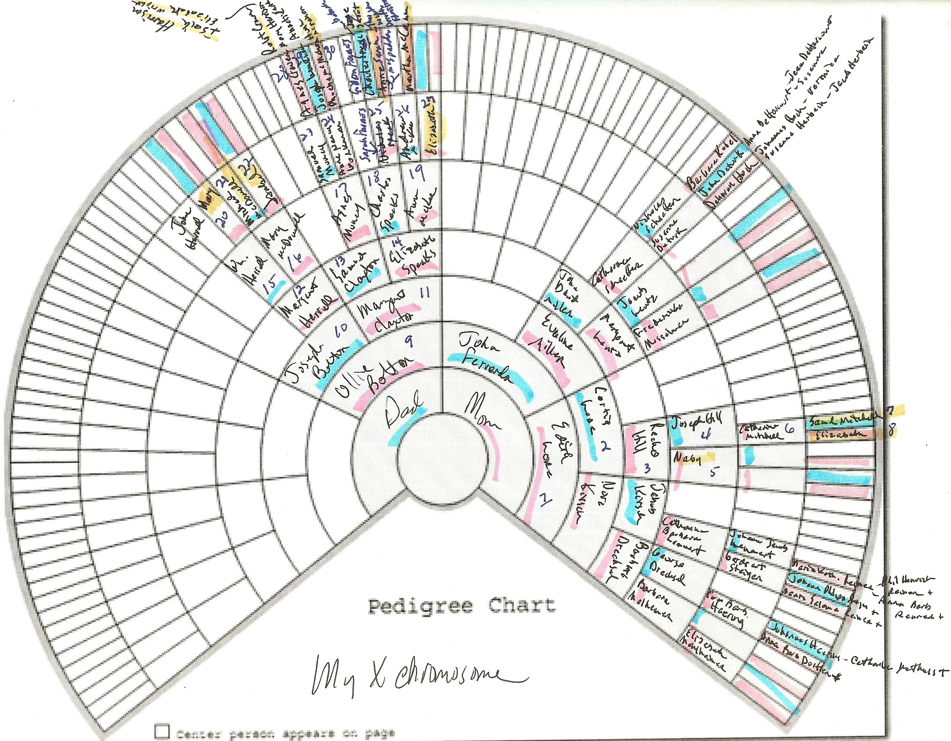 X chromosome genealogy genealogy dna testing pinterest female x chart inheritance named to make identification easier altavistaventures Images