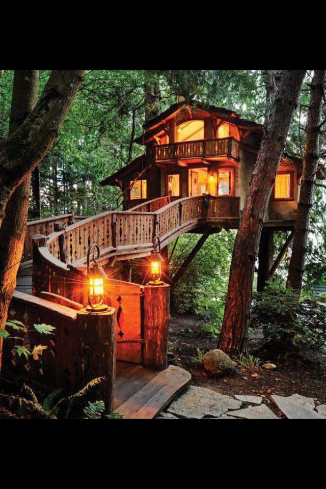 The best Tree house ever x