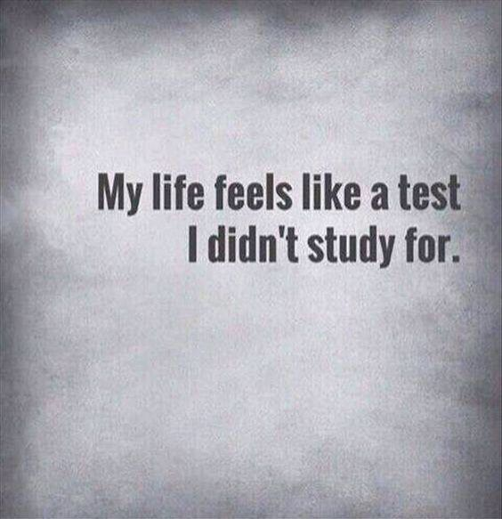 Photo of My Life Feels Like A Test I Didn't Study For || {Help during your studies | So that your …