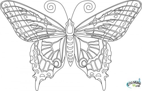 Related Butterfly Mandala Coloring Pages Printable item