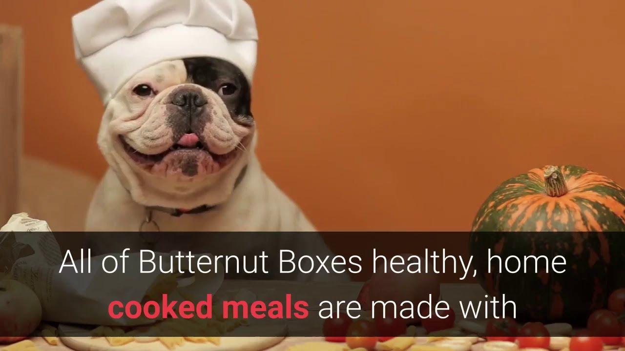 Butternut Box How To Get Butternut Box Dog Food At A Discount