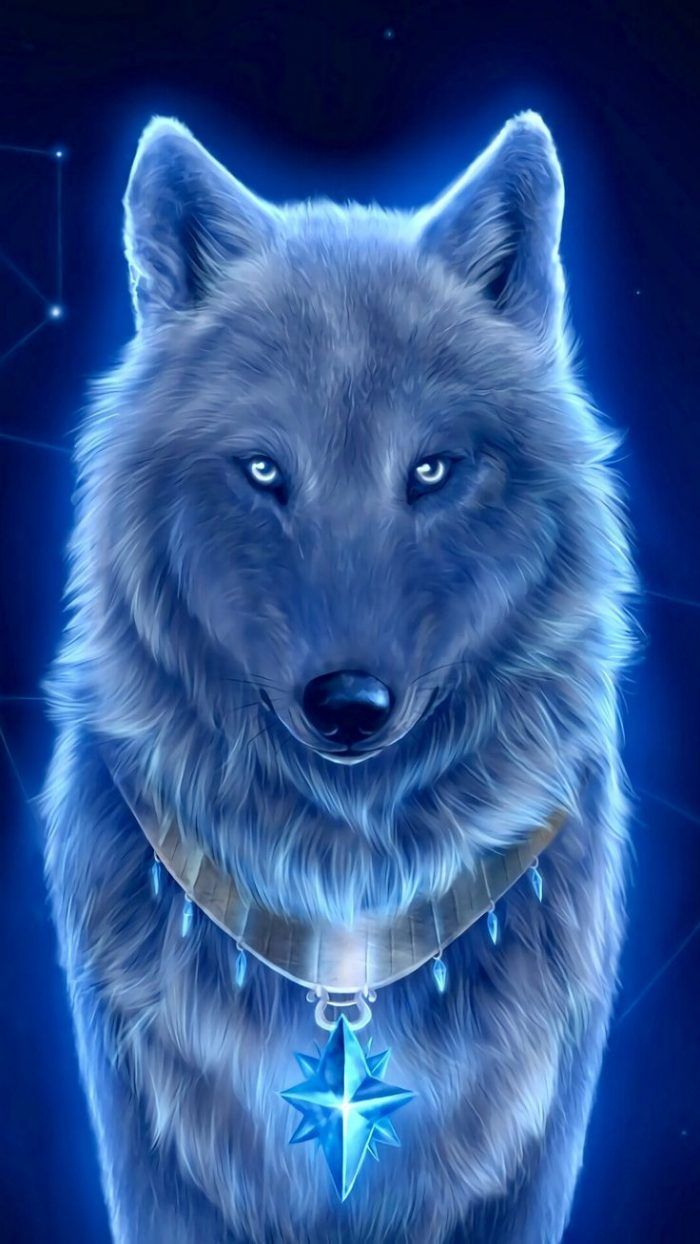 3d Wolf Iphone Wallpaper Cute Animal Drawings Wolf Pictures Wolf Wallpaper