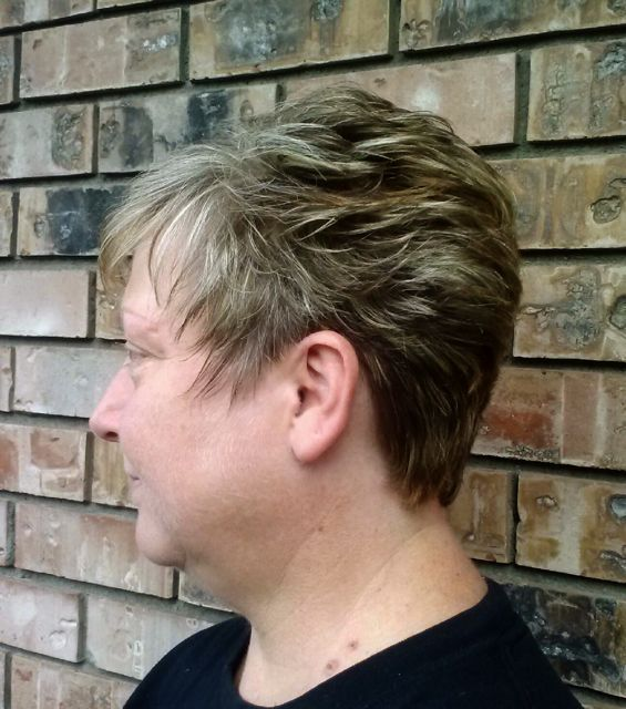 highlights cover gray hair