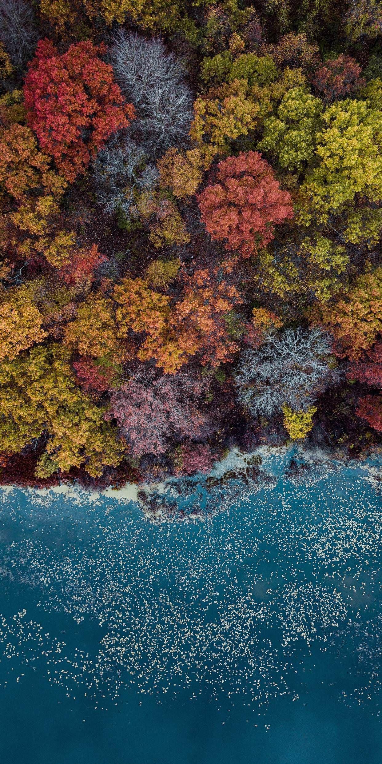 Colorful Waterfront Lake Savana Landscape Photography Nature Wallpaper Nature Photography