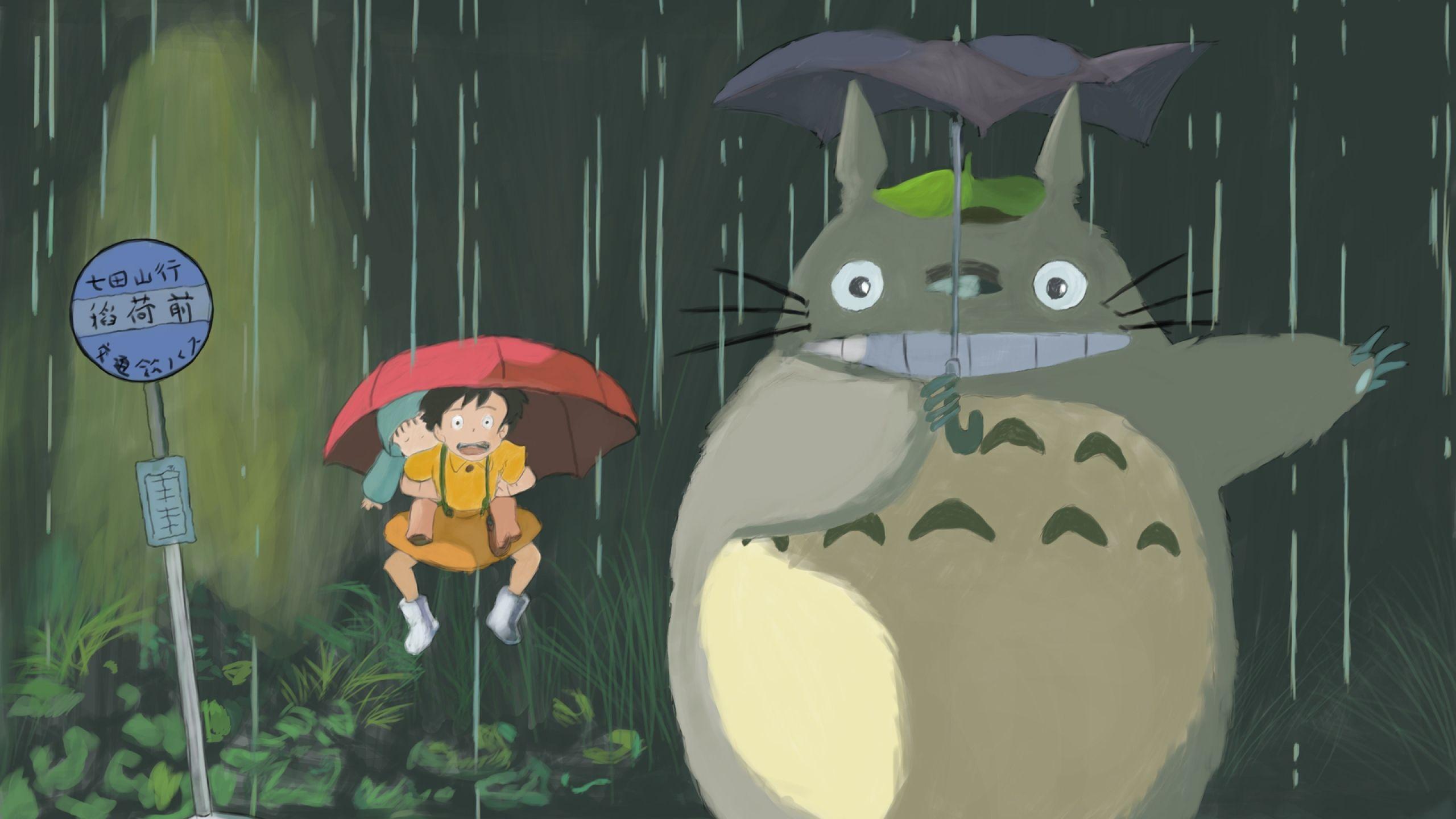 Download Wallpaper 2560x1440 Totoro Hayao Miyazaki Rain