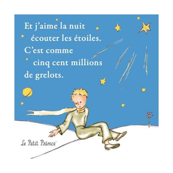 Epingle Par Mercedes Vera Sur French Stuff Le Petit Prince Petit Prince Quotes Le Petit Prince Citation