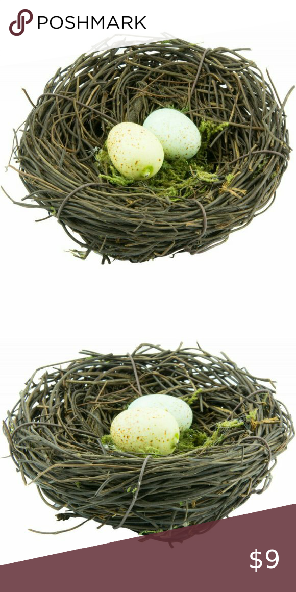 Natural Angel Vine 4 Bird Nest With Eggs Natural Brown Green Sheets Bird Nest