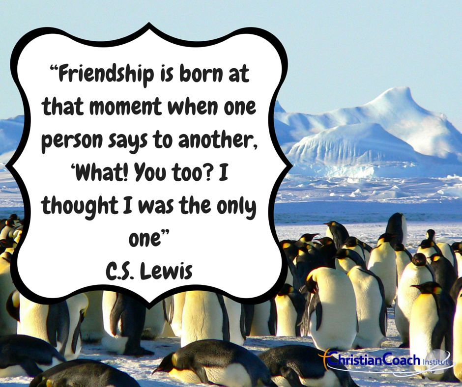 """""""Friendship is born at that moment when one person says to another, 'What! You too? I thought I was the only one"""" C.S. Lewis #CCinstitute"""