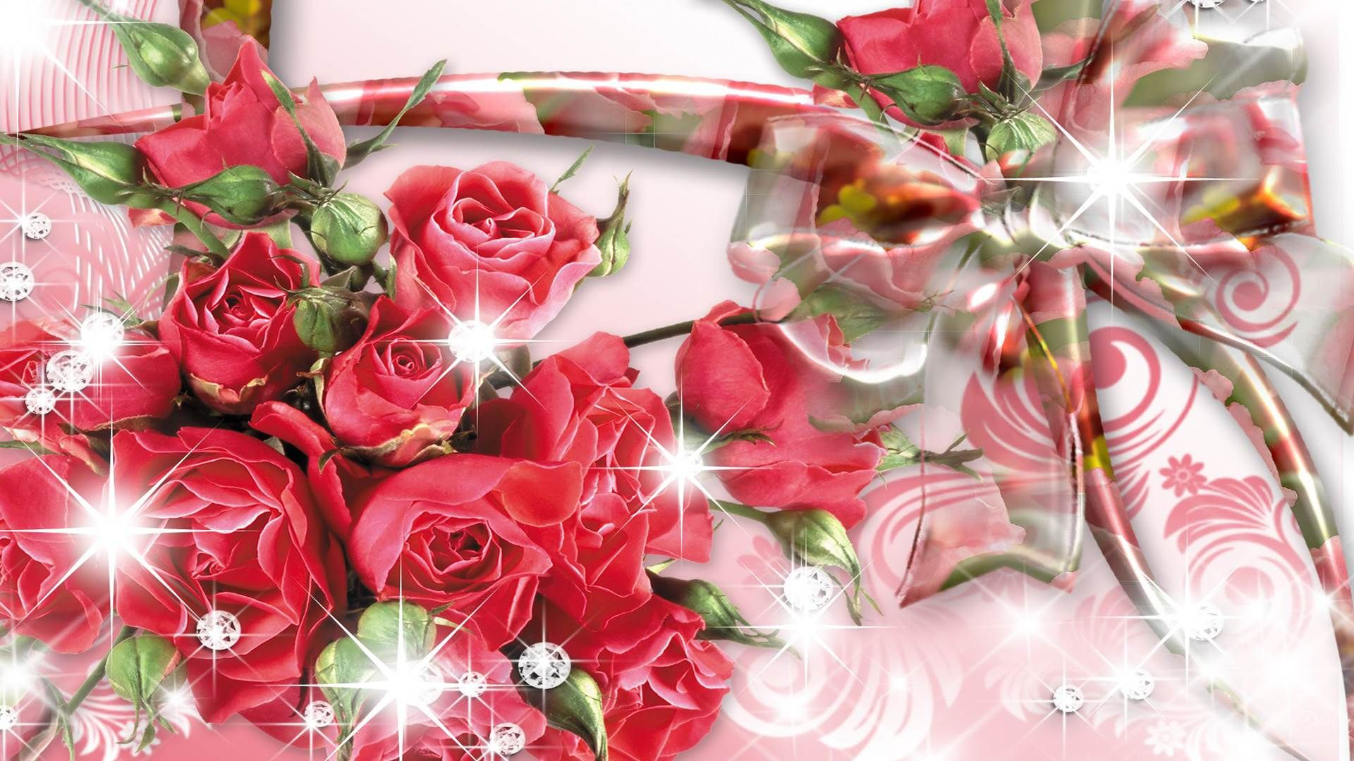 rose hd wallpapers backgrounds wallpaper 1600a—1200 rose image adorable wallpapers