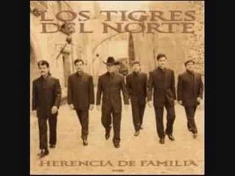 Los Tigres del Norte - Necesito mi Libertad - YouTube
