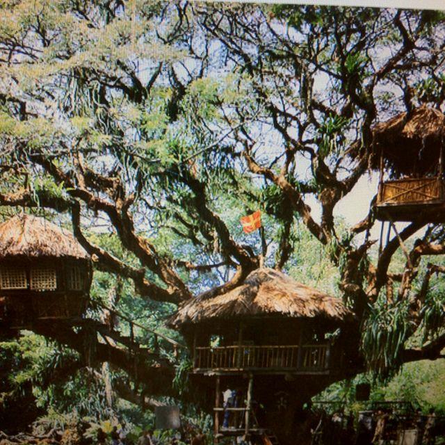 Luxury Tree Houses Designs: Best 25+ Swiss Family Robinson Ideas On Pinterest