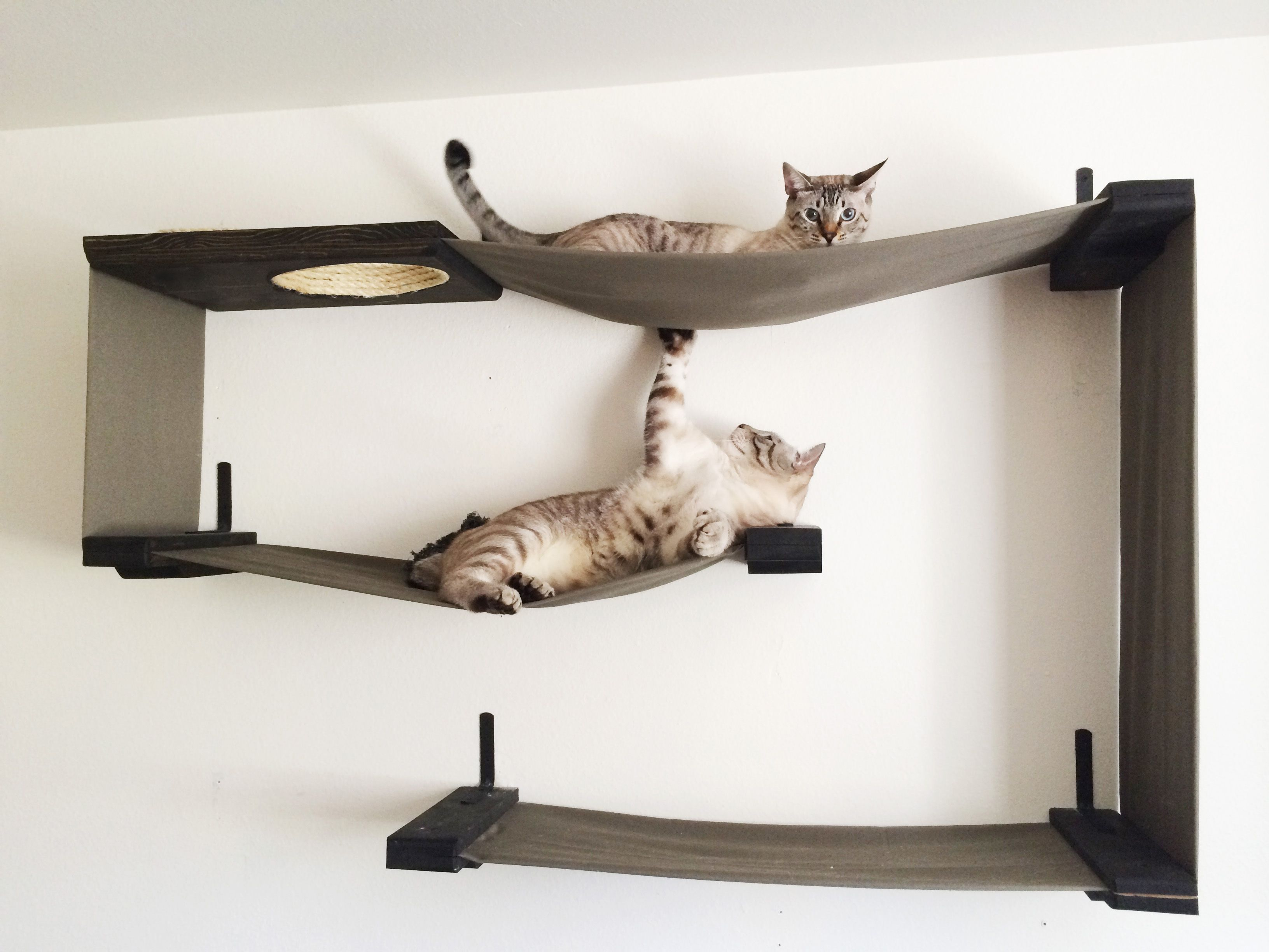CatostophiCreations... awesome cat trees that would be super easy to ...