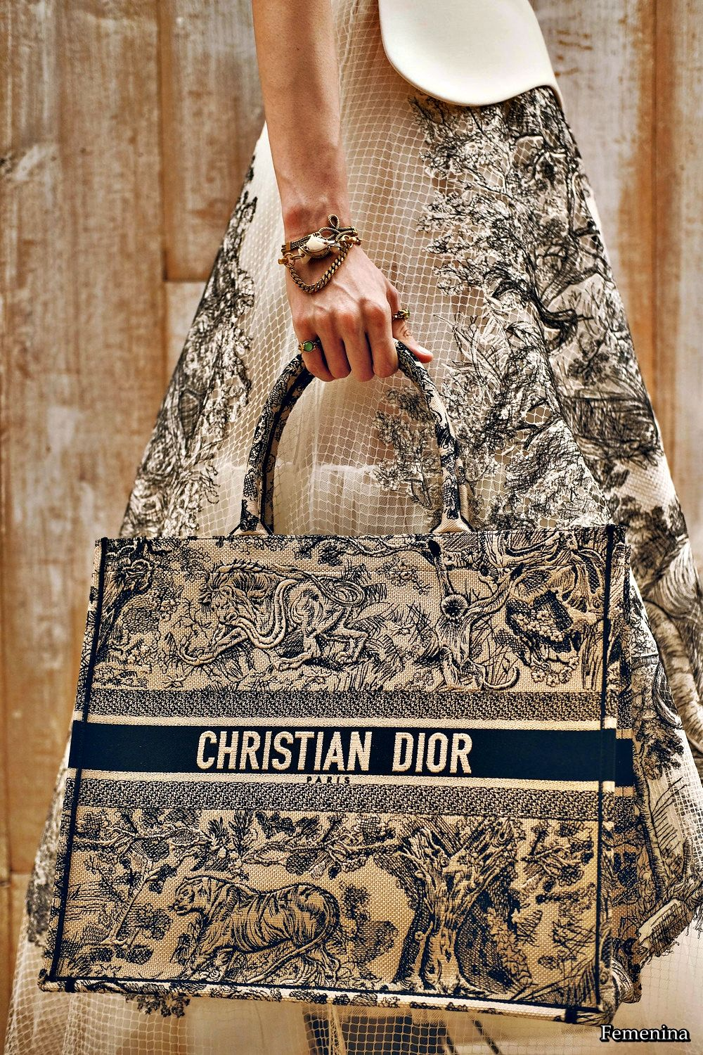 Resort Dior bag preview pictures forecast to wear for on every day in 2019