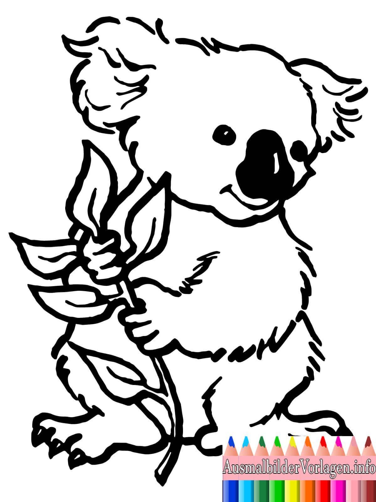 Koala Malvorlage | målarbilder | Pinterest | Tiere Malvorlagen ...
