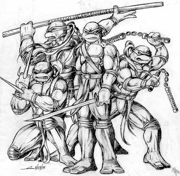 Ninja Turtle Drawings Google Search Ninja Turtle Drawing