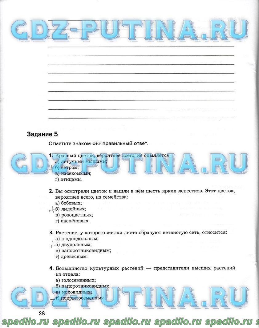 Гдз 7 класс по англискому спиши.ру