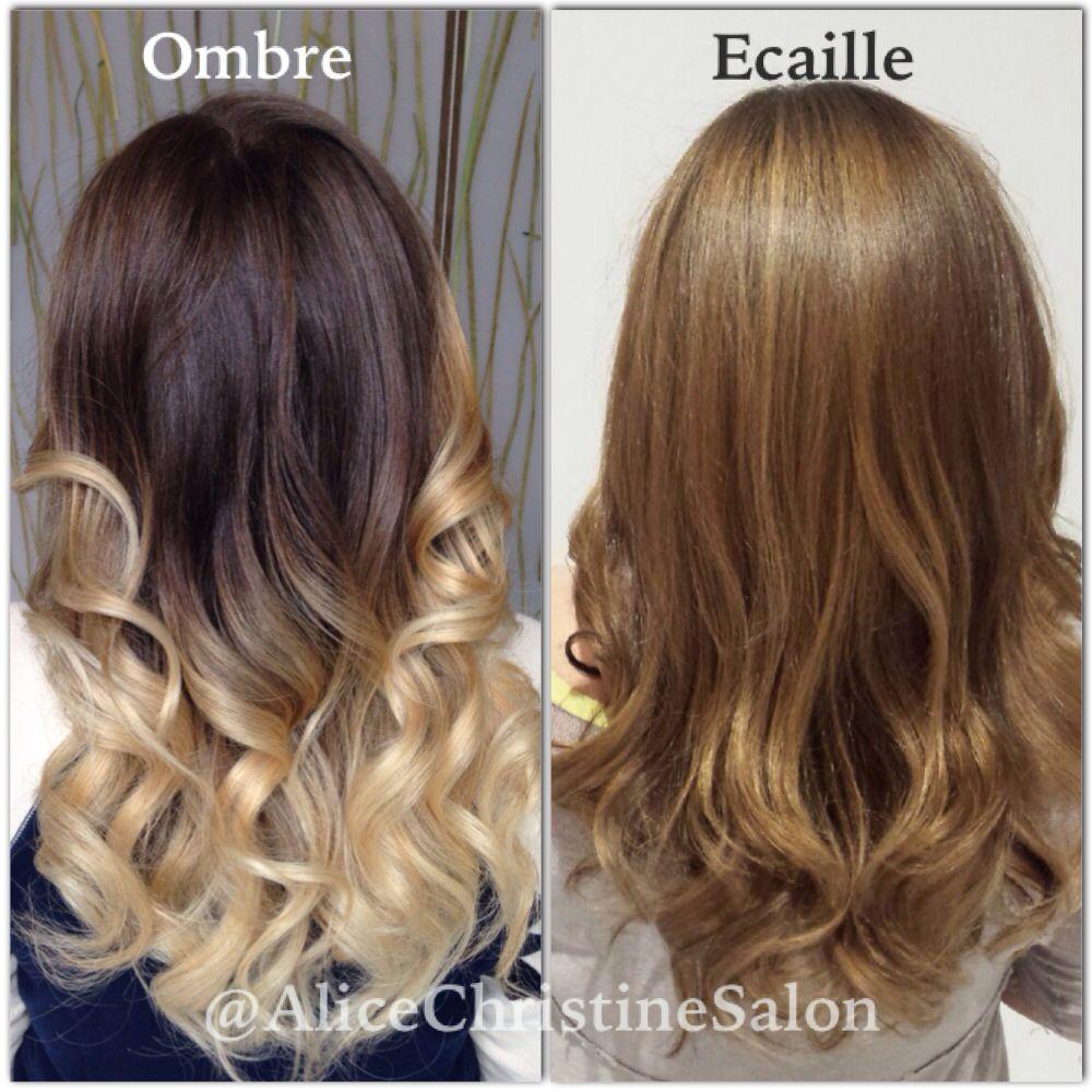 Ecaille Hair Color Ombre To Ecaille Tortoiseshell Hair Color Ecaille Hair Ecaille Hair Color Hair