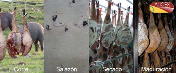 How is it made Iberian ham from Spain?   http://www.alicex.es/info-jamon/elaboracion-jamon-iberico.html