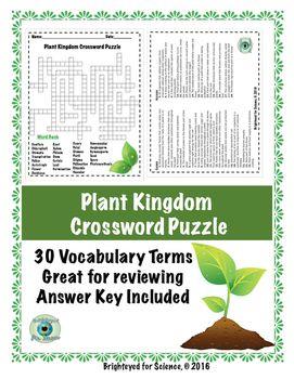 Plant Kingdom Crossword Puzzle Plant Lessons Gymnosperm Plants