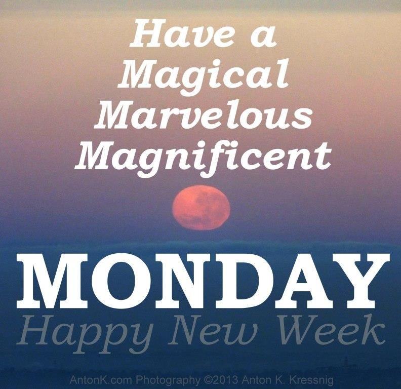 happy week quotes