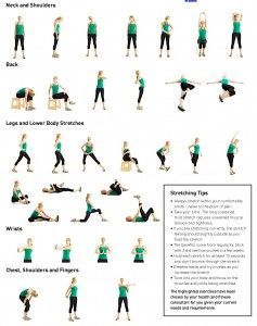 after the workout stretching  flexibility workout