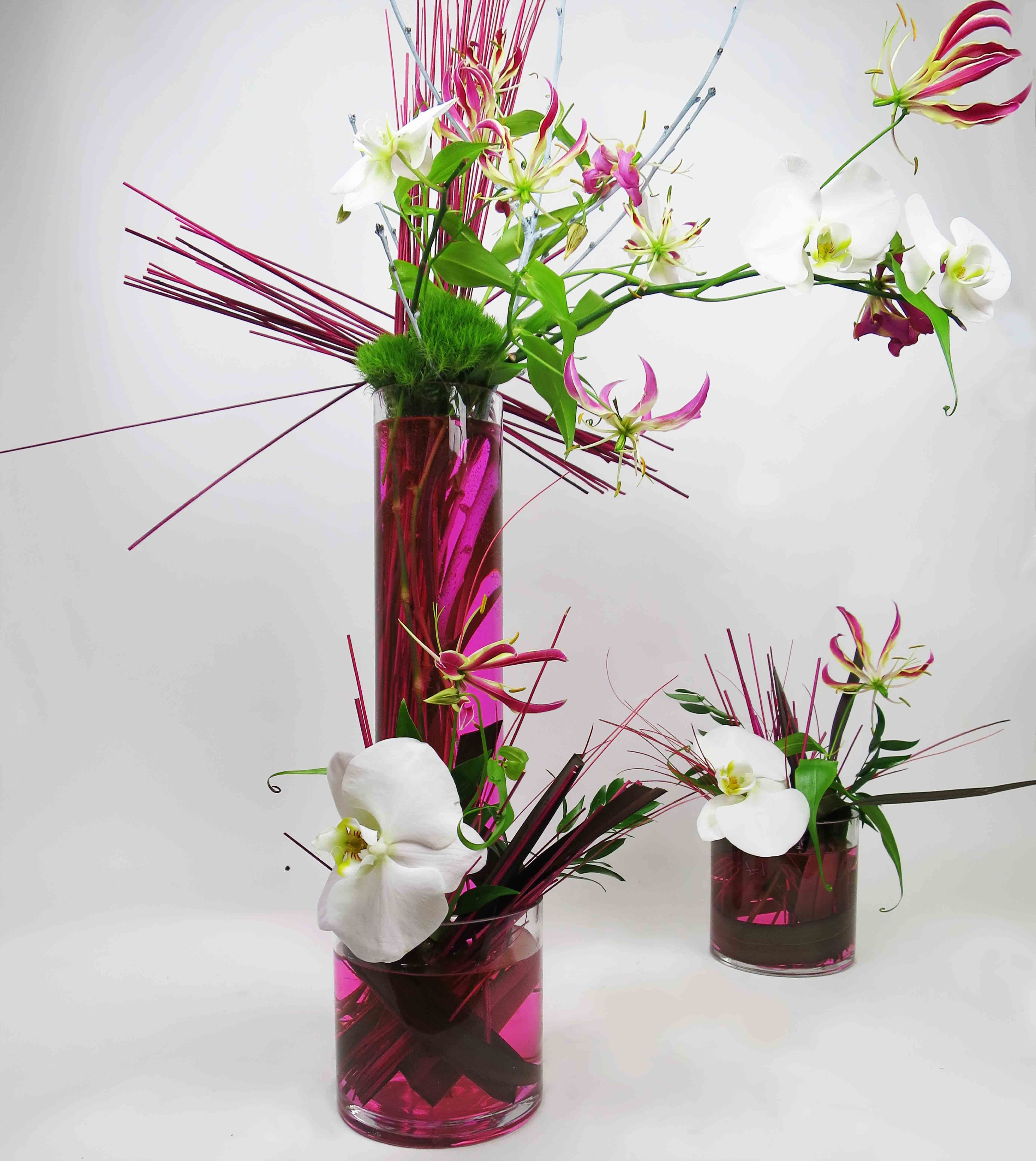 Gloriosa Phalenopsis Orchid Flowers Torontoflowercompany Flowercompany Flower Delivery Flowers Flower Company
