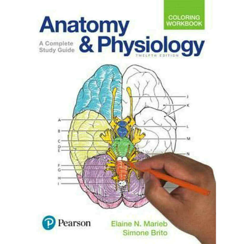 Anatomy And Physiology Coloring Workbook A Complete Study Guide 12th Edition Elaine N Marieb And Simone Brito In 2021 Anatomy Coloring Book Coloring Books Anatomy And Physiology