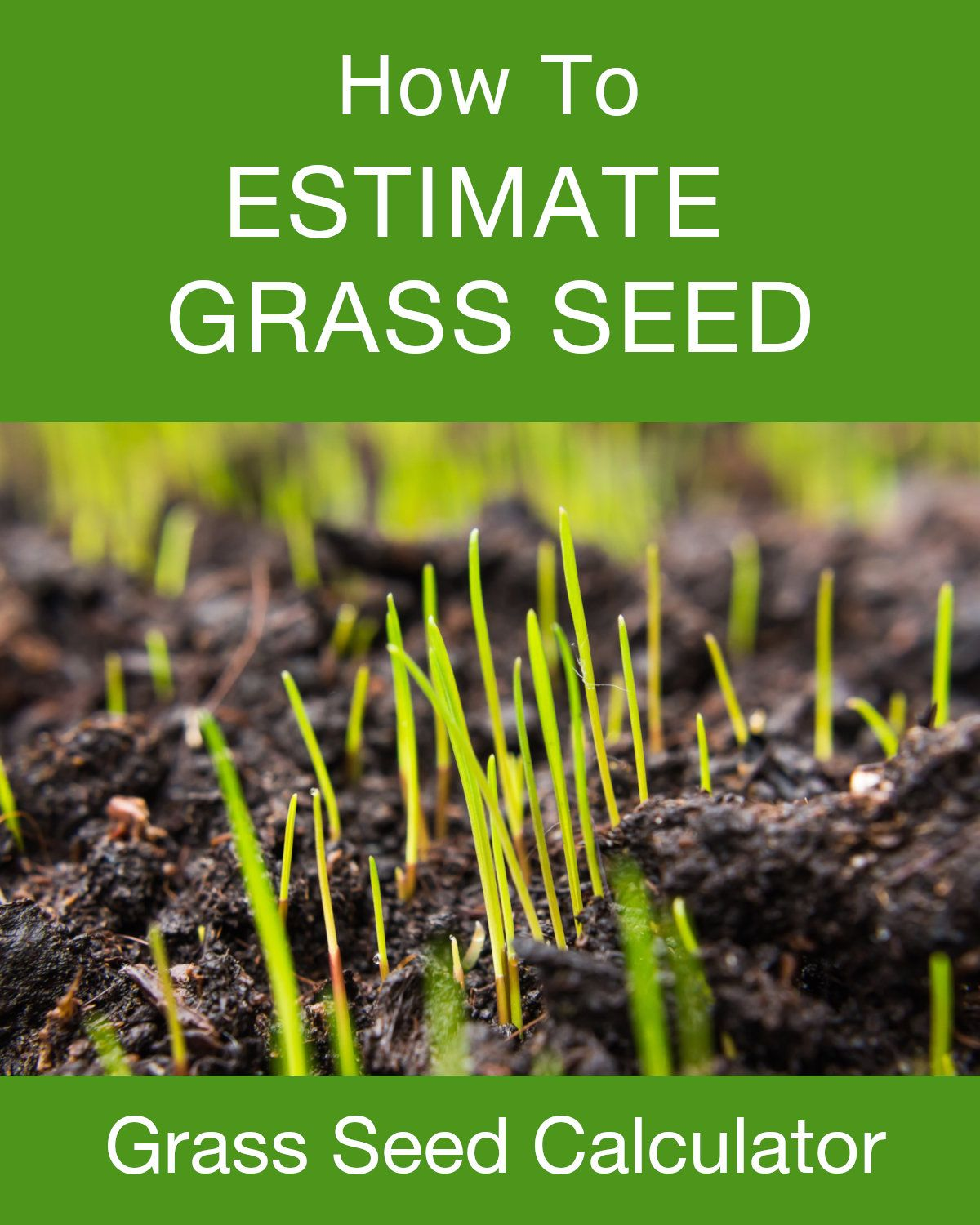 Grass Seed Calculator   Landscaping Designs and Project