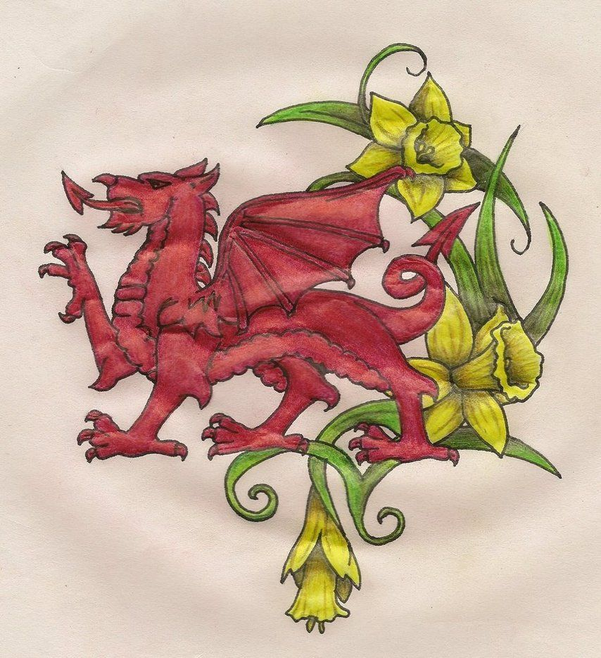 welsh dragon daffodils tribal tat inspiration pinterest welsh dragon welsh and daffodils. Black Bedroom Furniture Sets. Home Design Ideas