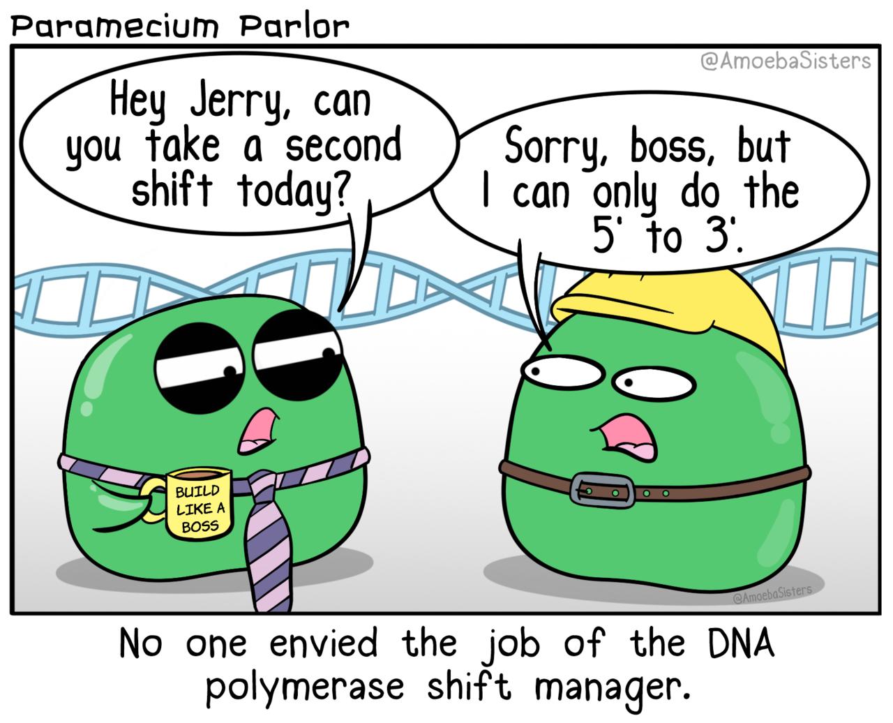 The Amoeba Sisters Biology jokes, Biology memes, Biology