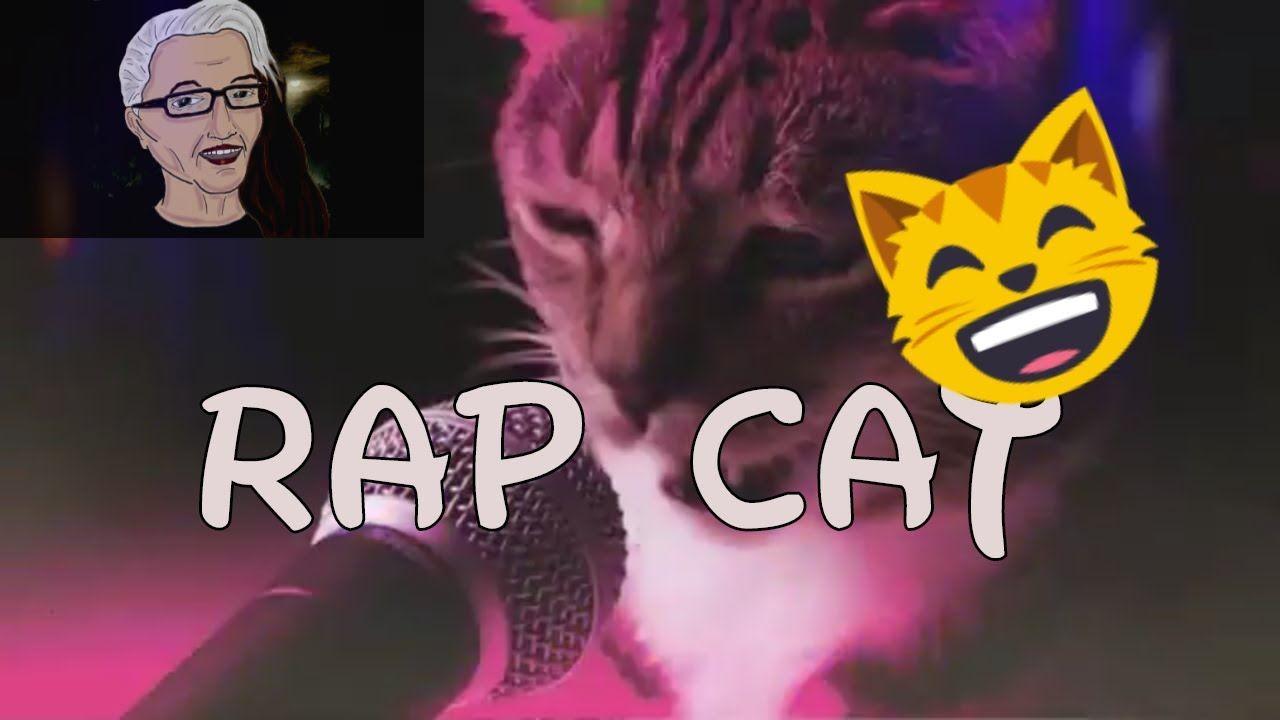 Rap Cat (Bodega Cats) Cover Version Bodega Cats I first