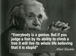 einstein spreuken Een levensverhaal op zich: een prachtige Einstein spreuk  einstein spreuken