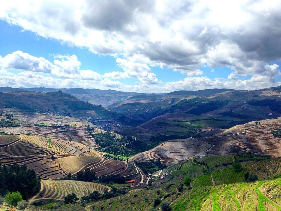 The hills just seem to be endless #hills #landscape #Douro #wanderlust #Portugal #travel by july_di